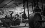 Novice Strength Program