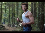 The Wolverine Work-Out