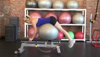 stability ball dolphin on bench - step 1